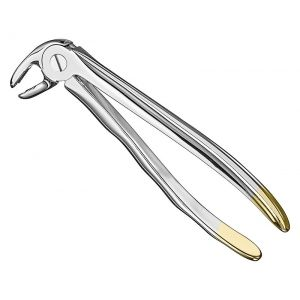 Extracting forceps, anat.